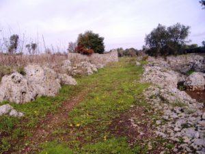 fig-6-strada-rurale-che-fiancheggia-a-nord-est-il-sito-di-cellini