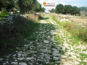 Viabilità romana tra Cerfignano e Uggiano La Chiesa (foto Archivio Archès).