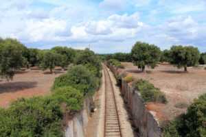 foto ferrovia di Dario Carbone