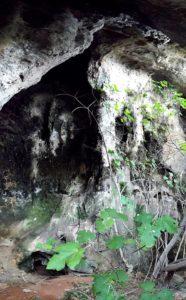 cavità lungo la falesia del Ciolo
